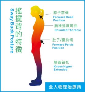 搖擺背,腰酸背痛,核心肌群訓練-全人物理治療所
